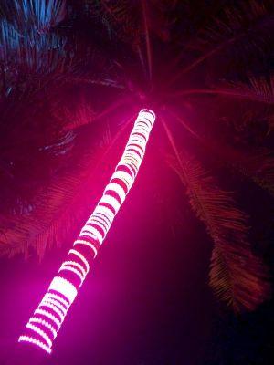 miami beach neon art deco